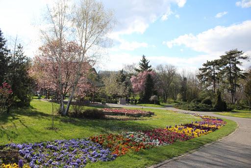 parcul botanic
